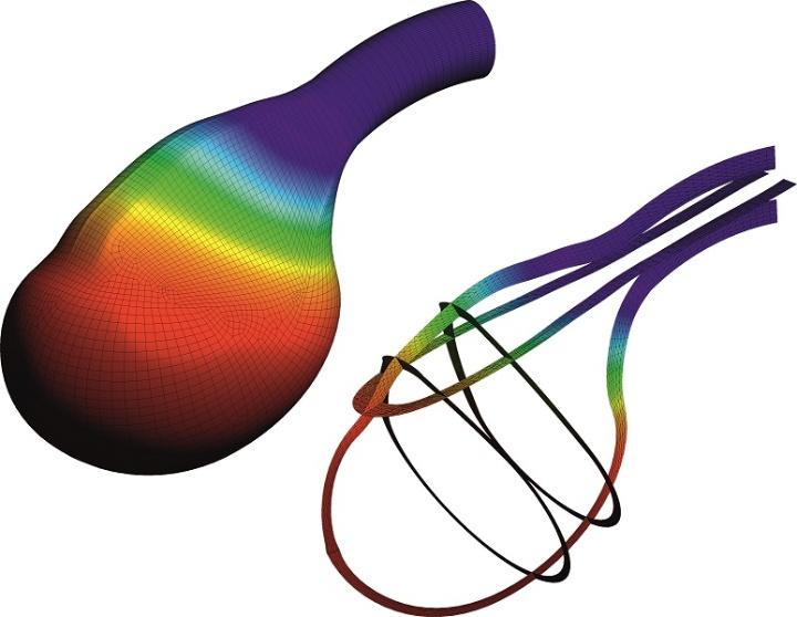 Modell der Harnblase (c) mit Genehmigung von Prof.Böl