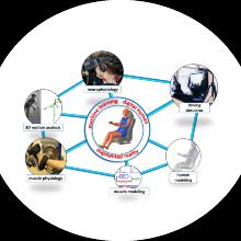 Netzwerk von Methoden und Kompetenzen zur Verbesserung der Mensch-Maschine- Interaktion in Driver-in-the-Loop-Simulationen